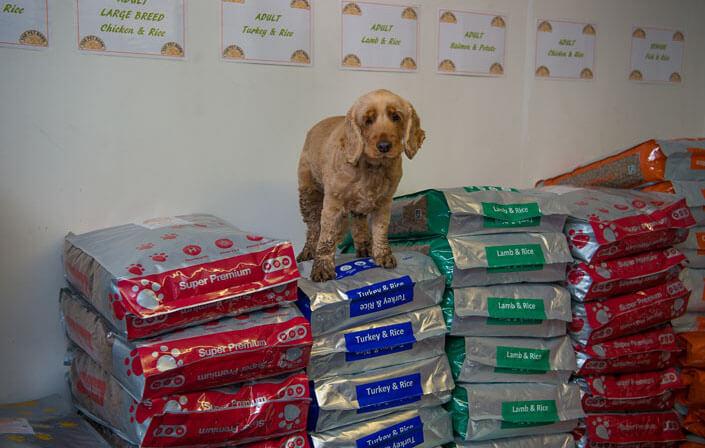 Dog Food The Pet Barn